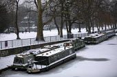 The Regents Canal frozen over, sub zero temperatures due to Storm Emma, Victoria Park, East London - Jess Hurd - 02-03-2018