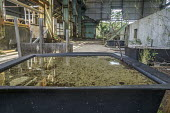 Paauilo, Big Island, Hawaii: Closed sugar mill - David Bacon - 03-03-2018