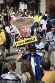 Donald Trump Loves Brexit placard, People's Vote March, Pro EU protest against Brexit and for a referendum on the final deal, London - Jess Hurd - 23-06-2018