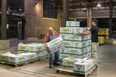 Detroit, Michigan USA workers moving Fruit and vegetables, Eastern Market - Jim West - 2010s,2018,age,ageing population,AGRICULTURAL,agriculture,America,american,americans,bays,box,boxes,business,by hand,Detroit,distributing,distribution,Eastern Market,EBF,Economic,Economy,elderly,emplo