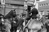 Battle of Lewisham 1977. Mounted Police trying to clear the route for the National Front march, London - NLA - 13-08-1977