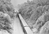 Train accident, Seer Green, Buckinghamshire 1981, caused when a driver stopped to clear a fallen tree across the line after heavy snowfall and another train crashed into the first, killing one driver... - Peter Arkell - 1980s,1981,accident,accidental,accidents,accidents at work,carriage,carriages,Chiltern Main Line,CLIMATE,cold,conditions,country,countryside,crash,crashed,death,deaths,DIA,died,driver,DRIVERS,DRIVING,