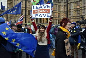 Protest as Parliament prepares to vote on Brexit, Westminster, London - Stefano Cagnoni - 15-01-2019