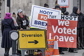 Diversion. Leave protest as Parliament prepares to vote on Brexit, Westminster, London - Philip Wolmuth - 15-01-2019