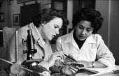 Girton College Cambridge 1959 Women Cancer research students examining bacetria, Zoology Department laboratory, Shireen Saleh (L) and Winnifred Peirce (R) - Kurt Hutton - 1950s,1959,bacteria,BAME,BAMEs,Black,Black and White,BME,bmes,Cambridge,Cancer,CANCERS,College,COLLEGES,communicating,communication,conversation,conversations,course,courses,degree,degrees,Department,