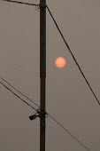Air pollution in India. Sun barely penetrating the smog at the Pakistan border, near Amritsar, Punjab. Air pollution in India is a serious issue with the major sources being fuelwood and biomass burni... - Martin Mayer - 01-11-2018