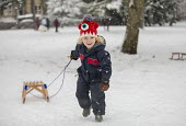 Children having fun in the snow, St Andrews Park, Bristol - Paul Box - 01-02-2019