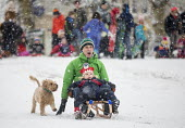 Children having fun in the snow, St Andrews Park, Bristol - Paul Box - 2010s,2018,2019,animal,animals,boy,boys,canine,child,CHILDHOOD,children,cities,City,CLIMATE,conditions,DAD,DADDIES,DADDY,DADS,dog,dogs,enjoy,enjoying,enjoyment,excited,excitement,exciting,families,FAM