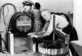 Wine production, Hambledon vineyard, Hampshire 1959. It was the first vineyard to be planted specifically to produce wine for sale since 1875 - so the planting of the Hambledon vineyard eight years pr... - Alan Vines - 10-09-1959