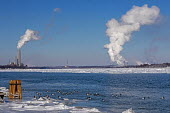 Marine City, Michigan, USA: DTE Energy coal and oil fired St. Clair power station on the U.S. side of the ice filled St. Clair River. Canvasback ducks swim in open water near shore - Jim West - 2010s,2019,Air Pollution,Air Quality,America,animal,animals,Aythya valisineria,bird,birds,Blue Sky,border,C02 Emissions,CAN124,Canada,Climate Change,coal fired,cold,Detroit Edison,DTE Energy,DUCK,duck