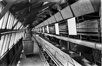 Worker feeding battery farmed chickens, Yorkshire, 1948 - Felix H. Man - 03-03-1948