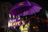 Pro Brexit UKIP campaigners protest outside Parliament during votes on how the UK leaves the European Union, Westminster, Londo - Jess Hurd - 2010s,2019,activist,activists,against,Bowler Hat,bowler hats,Brexit,CAMPAIGN,campaigners,CAMPAIGNING,CAMPAIGNS,deal,DEMONSTRATING,Demonstration,DEMONSTRATIONS,EU,European Union,eurosceptic,Eurosceptic