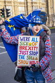 Pro EU campaigners protesting outside Parliament during votes on how the UK leaves the European Union, Westminster, London. - Jess Hurd - 14-03-2019