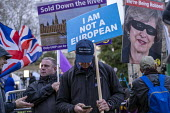 Brexit campaigners, Make Britain Great Again hat, protesting outside Parliament during votes on how the UK leaves the European Union, Westminster, London. I Am Not a European - Jess Hurd - 14-03-2019