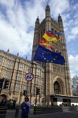 Anti Brexit protest flags, Parliament, Westminster, London - David Mansell - 2010s,2019,activist,activists,against,Brexit,CAMPAIGNING,CAMPAIGNS,DEMONSTRATING,Demonstration,EU,European Union,flag,flags,Houses of Parliament,London,parliament,POL,political,POLITICIAN,POLITICIANS,