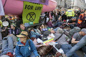 Extinction Rebellion climate change campaigners occupy Oxford Circus, London - Philip Wolmuth - 2010s,2019,activist,activists,against,boat,boats,CAMPAIGN,campaigner,campaigners,CAMPAIGNING,CAMPAIGNS,civil disobedience,Climate Change,DEMONSTRATING,demonstration,DEMONSTRATIONS,environment,environm