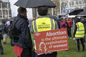 March For Life anti abortion rally, Parliament Square, London - Jess Hurd - 11-05-2019