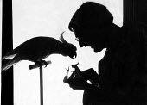 Engert der Vogler at home with cockatoos Munich Germany 1949 - Hannes Rosenberg - 1940s,1949,ACE,art,artist,artists,arts,artwork,artworks,beak,bird,birds,Cacatuoidea,cockatoo,cockatoos,culture,cutout,der Vogler,Engert der Vogler,German,germans,Germany,hobbies,hobby,hobbyist,home,LF