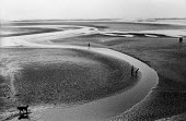 Children playing, seashore at low tide Blackpool 1965Children playing, seashore at low tide Blackpool 1965Children playing, seashore at low tide Blackpool 1965Children playing, seashore at low tide Bl... - Romano Cagnoni - 1960s,1965,animal,animals,beach,BEACHES,Blackpool,canine,CHILD,CHILDHOOD,Children,COAST,coastal,coasts,curve,curves,dog,dogs,holiday,holiday maker,holiday makers,holidaymaker,holidaymakers,holidays,ju
