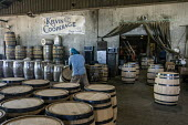 Louisville, Kentucky, USA: Workers at Kelvin Cooperage making oak barrels for aging bourbon and wine - Jim West - 2010s,2019,american,americans,barrel,barrel maker,barrel making,barrels,bourbon,capitalism,cask,casks,cooper,cooperage,coopers,EBF,Economic,Economy,employee,employees,Employment,FACTORIES,factory,Indu