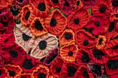 World War Memorial poppies, Yarn bombing or guerrilla knitting in Llwyngwril, the quirky little Welsh village knits creations through the winter as a community project to decorate the village in the s... - Jess Hurd - 2010s,2019,ACE,armed,art,arts,BOMB,bombing,bombings,BOMBS,Cambrian Coast,Coast,coastal,coasts,communities,community,crochet,culture,decorate,floral tribute,floral tributes,flower,flowering,flowers,gra