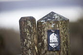 Pembrokeshire coastal path, Pembroke. Acorn waymark - Paul Box - 03-05-2017