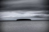 Steep Holm, Weston-super-Mare, Somerset - Paul Box - 2010s,2019,COAST,country,countryside,ENI,environment,Environmental Issues,island,islands,nature,OCEAN,outdoors,outside,RURAL,sea,seaside,seasides,Somerset,WATER