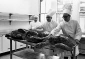 Chefs preparing three large turtles for turtle soup, Lord Mayor's Banquet, Guildhall, London 1958 - Alan Vines - 1950s,1958,AFFLUENCE,AFFLUENT,Bourgeoisie,catering,chef,chefs,cook,COOKERY,cooking,cooks,elite,elitism,employee,employees,Employment,EQUALITY,Food Preparation,green Turtles,hat,hats,high,high income,i