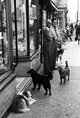 Dogs and shoppers, High Street Aldeburgh Suffolk 1957 - Kurt Hutton - 1950s,1957,animal,animals,business,canine,dog,dogs,EBF,Economic,Economy,High Street,holiday,holidaymaker,holidaymakers,holidays,Leisure,LFL,LIFE,male,man,men,outlet,outlets,OWNERSHIP,PEOPLE,person,per