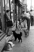 Dogs and shoppers, High Street Aldeburgh Suffolk 1957 - Kurt Hutton - 1950s,1957,animal,animals,business,canine,dog,dogs,EBF,Economic,Economy,FEMALE,High Street,holiday,holidaymaker,holidaymakers,holidays,Leisure,LFL,LIFE,male,man,men,outlet,outlets,OWNERSHIP,PEOPLE,per