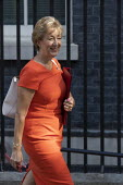 Andrea Leadsom leaving Downing Street after their first cabinet meeting, Westminster, London. - Jess Hurd - 2010s,2019,Andrea Leadsom,Boris Johnson,cabinet,CONSERVATIVE,Conservative Party,conservatives,Downing Street,FEMALE,leaving,London,meeting,MEETINGS,MP,MPs,people,person,persons,POL,political,politicia