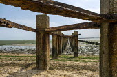 Shoeburyness Cold War defence boom, built early 1950s to prevent enemy submarines from accessing the River Thames, Essex. The boom comprised two off set rows of concrete piles, linked by angle iron st... - Jess Hurd - 26-07-2007