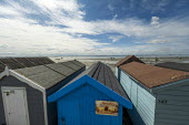 Beach huts, Southend, Essex. Sandy Bottoms - Jess Hurd - 2010s,2019,Beach,Beach huts,BEACHES,Blue Sky,COAST,Essex,hut,huts,Leisure,LFL,LIFE,Lifestyle,OCEAN,PEOPLE,RECREATION,RECREATIONAL,rural,Sandy,sea,seafront,SEAFRONTS,seashore,seaside,seasides,shore,sho