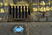 Blue crab stencil, drain and double yellow lines, Leigh-on-Sea, Essex. - Jess Hurd - 2010s,2019,curb,Essex,Leigh-on-Sea,Leisure,LFL,LIFE,Lifestyle,pavement,PEOPLE,RECREATION,RECREATIONAL,rural,sidewalk,stencil