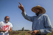 Everson, USA: Ramon Torres, Pres of Familias Unidas por la Justicia at their new cooperative, Tierra y Libertad - David Bacon - 2010s,2019,agricultural,agriculture,blueberries,blueberry,bush,by hand,capitalism,co operative,co operatives,cooperative,co-operative,cooperatives,co-operatives,crop,crops,Diaspora,employee,employees,