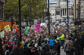 Extinction Rebellion red hand, last day protesting against lack of Government action on climate change. Nonviolent direct action shutting down central London. - Jess Hurd - 18-10-2019