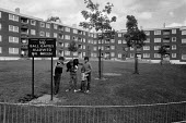 Children, Paddington estate, London 1972 a Greater London Council estate. No ball games allowed on green - Peter Arkell - 30-05-1972