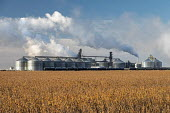 North Dakota, USA. Tharaldson Ethanol plant producing 153 million gallons of ethanol from corn annually - Jim West - 2010s,2019,agricultural,agriculture,agrofuel,agrofuels,America,american,americans,biofuel,biofuels,capitalism,chimney,chimneys,corn,country,countryside,crop,crops,EBF,Economic,Economy,energy,ethanol,f