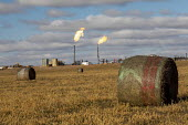 North Dakota, USA Natural gas flaring off at an oil production site, Bakken shale formation, hay bales and agriculture - Jim West - 2010s,2019,AGRICULTURAL,agriculture,America,american,americans,Bakken shale,capitalism,climate change,country,countryside,crude oil,drill,drilling,EBF,Economic,Economy,energy,exploration,farm,flame,fl