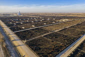 Kersey, Colorado, USA Cattle feedlot, Five Rivers Cattle. It has a capacity of 98,000 cattle - Jim West - 07-11-2019