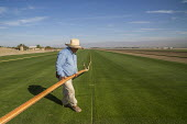 Coachella, California, USA, West Coast Turf growing, irrigator moving plastic irrigation pipes and sprinklers. The turf will be cut into rolls and taken to baseball and football stadiums - David Bacon - 14-11-2019