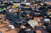Washington DC USA. Young activists staged a die in during a Funeral for Future on Capitol Hill. They demanded that government addresses the crisis of climate change. It was part of Fridays for Future... - Jim West - 29-11-2019