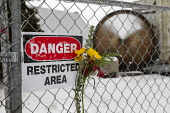 Madison Heights, Michigan USA, flower on the fence, Environmental Protection Agency Superfund cleanup site where the owner of Electro-Plating Services dumped toxic chemicals. A green ooze containing h... - Jim West - 19-01-2020