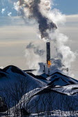 River Rouge, Michigan, USA. Heaps of coal, United States Steel plant, Zug Island, Great Lakes Works. US Steel plans to close most of Great Lakes Works in 2020. - Jim West - 2020,2020s,America,american,americans,capitalism,carbon,chimney,chimneys,CLIMATE,climate change,close,closed,closing,closure,closures,coal,conditions,emissions,environmental degradation,FACTORIES,fact
