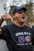 Brexit Day, Westminster, London. - Jess Hurd - 2020,2020s,activist,activists,against,Brexit,Brexit Day,CAMPAIGNING,CAMPAIGNS,DEMONSTRATING,demonstration,EU,European Union,Independence,leave,London,nationalism,nationalist,nationalists,Protest,PROTE