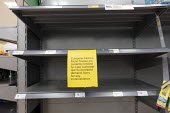 No facial tissues, empty shelves, Coronavirus panic buying as customers stockpile, Morrisons Supermarket, Stratford upon Avon, Warwickshire. Sign says facial tissues is currently limitied to 2 per cus... - John Harris - 2020,2020s,bought,buy,buyer,buyers,buying,commodities,commodity,communicating,communication,consumer,consumers,contagion,contagious,Coronavirus,Covid 19,COVID-19,crisis,customer,customers,demand,disea