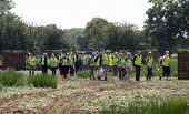 Migrant workers walking from the spring onion fields to their shuttle transport, Warwickshire - John Harris - 25-06-2020