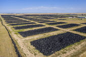 Colorado, USA. Piles of stored tires, CH2E Tire Recycling Facility northeast of Denver. The waste tires are recycled into a variety of end user materials including tire derived fuel, tire derived aggr... - Jim West - 03-07-2020