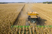USA, harvesting corn with a combine harvester on a Ohio farm - Jim West - 25-09-2020