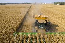USA, harvesting corn with a combine harvester on a Ohio farm - Jim West - 25-09-2020